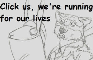 RUN NINJA LLAMA RUN, animation by LabradoriteWolf