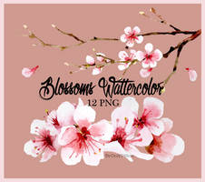 070817 PNG Blossoms Wattercolor by Only148cm