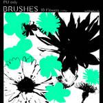 Photoshop Brushes - Flowers