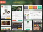 Free Online Store UI Kit [PSD]