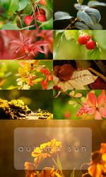 autumn sun '17 by erebus-odora