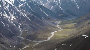 Wilderness - Arctic 2
