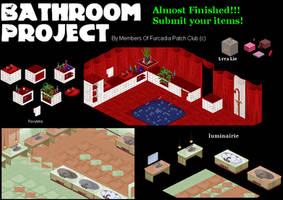 Bathroom Project Patch