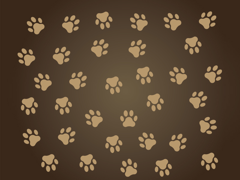 Free vector dog paw + PNG by AlsusArt on DeviantArt