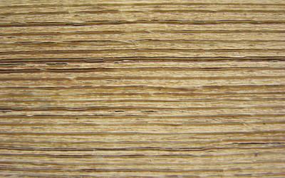 Wood Pattern (WP)