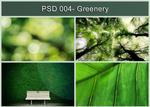 PSD 004- Greenery
