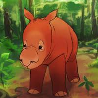 Sumatran rhino - Small animation