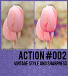 Vintage Style And Sharpness