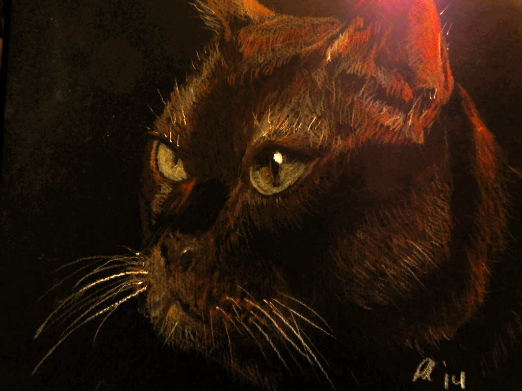 Dark Cat on Black Board by philippeL
