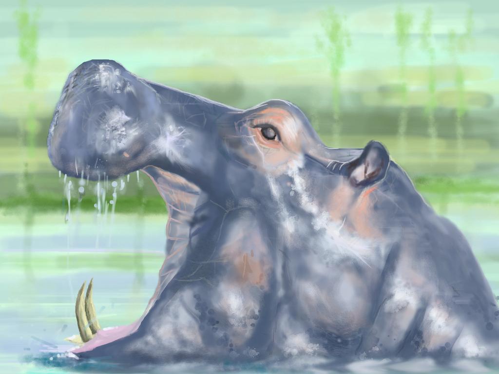 MURO HIPPO by philippeL