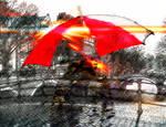 Umbrella Commision