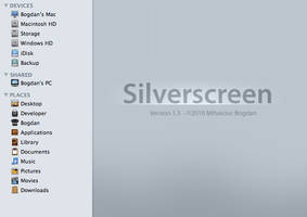 Silverscreen by bogo-d