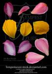 Flower Petals-Stock