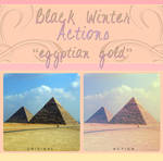Black Winter Actions - Egyptian Gold