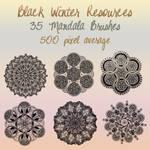 Black Winter Mandala Brushes