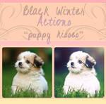 Black Winter Actions - Puppy Kisses