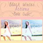 Black Winter Actions - Cold Dusk