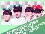 SEVENTEEN HOSHI PNG PACK 1