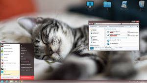 ZScat for Win7
