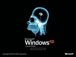 Windows XP Homer Edition by eduardowojcikiewicz