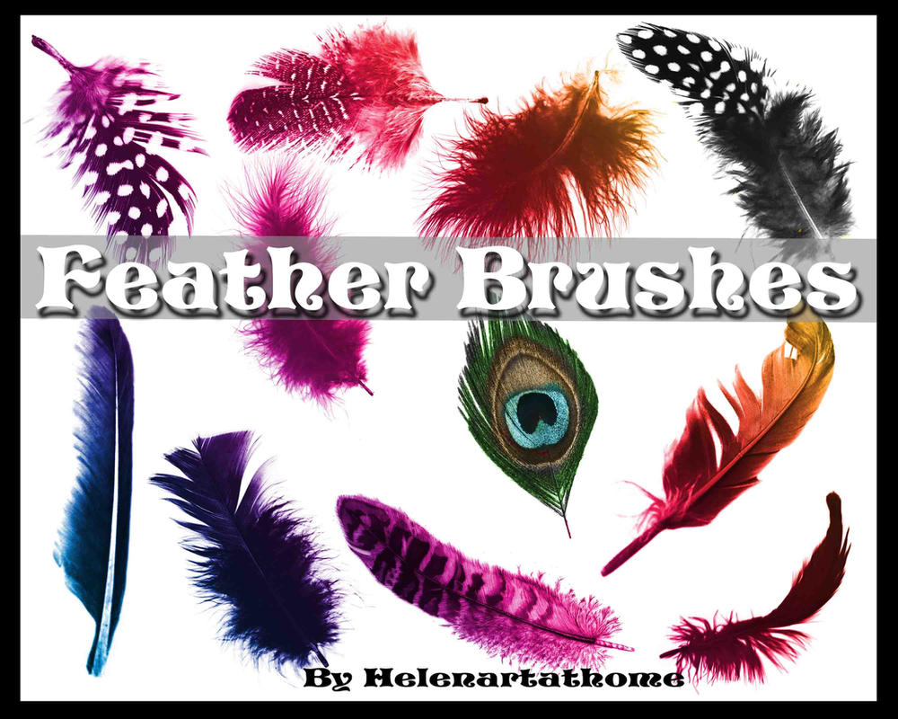Feather Brushes by Helenartathome