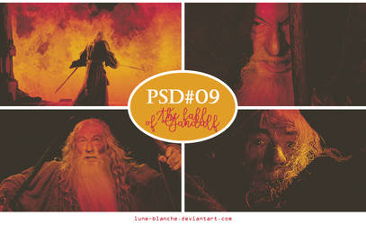 PSD #09 - The fall of Gandalf by lune-blanche
