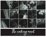 The waking mind - Icon Textures #75 by lune-blanche