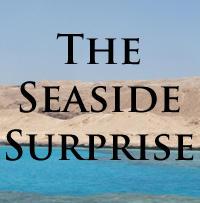 The Seaside Surprise