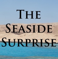 The Seaside Surprise by brothejr