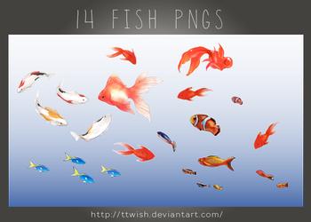 Fish PNGs