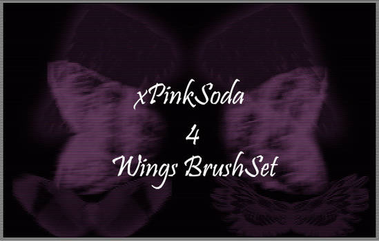 4 Wings -Brushset