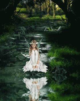 Woodland Fairy Animated