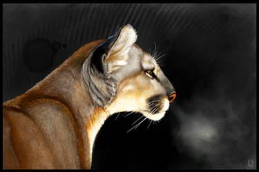 Cougar Intensity Sketchbook Mobile Tutorial by ArtofJefferyHebert