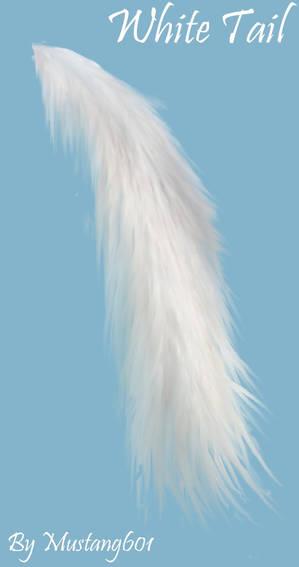 White Tail