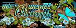 Best Wishes Always by KmyGraphic