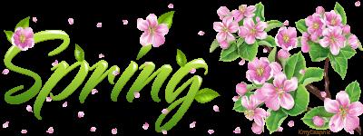 Spring by KmyGraphic