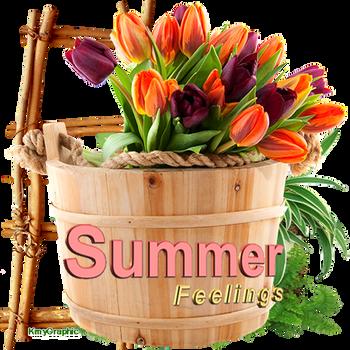 Summer-Feelings by KmyGraphic