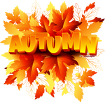Toamna (autumn)