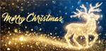 Christmas Deer by KmyGraphic
