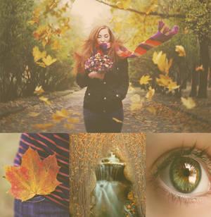 Yellow autumn action