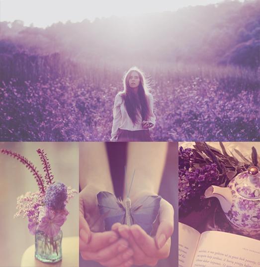 Purple wonderland action by Bokehlie