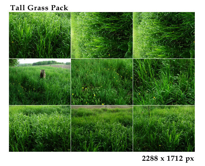 Tall Grass Pack by tennyoSTOCK