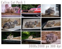 Calico Cat Pack 1