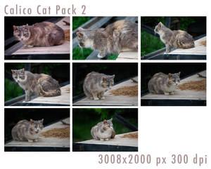 Calico Cat Pack 2