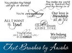 8 Text Brushes