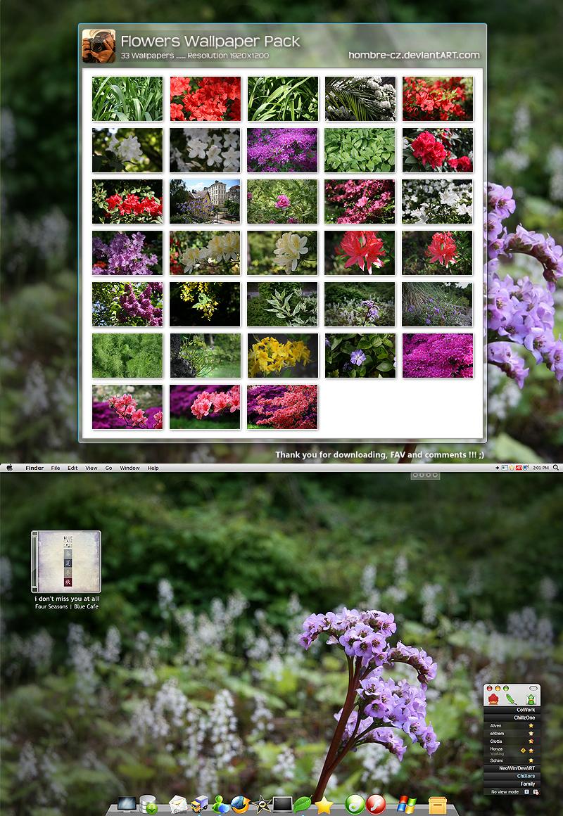Flowers Widescr Wallpaper Pack