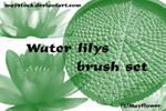Water lilys brush set