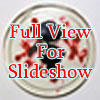 Float 37 slide show