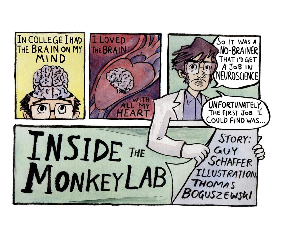 Inside the Monkey Lab by Guy Schaffer by Skeleton-Boy