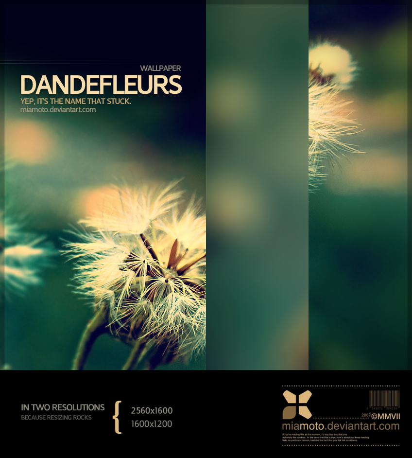 Dandefleurs by Miamoto